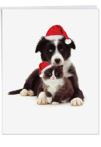 (Copy Cats Border Collie' Jumbo Christmas Card with Envelope (8.5 x 11 Inch) - Cute Dog and Cat Wearing Santa Hat, Furry Cuddly Pets, Stationery Set for Personalized Happy Holidays Greeting J6596GXSG)