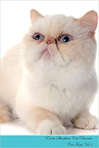 0b2d1da911 Exotic Shorthair Cat Presents  Cat Facts Workbook. Exotic Shorthair Cat  Presents Cat Facts Workbook with Self Therapy