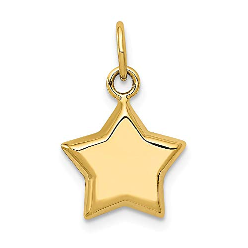 Jewelry Pendants & Charms Themed Charms 14k 3-D Puffed Star Charm