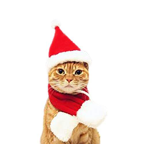 Pet Dog cat Clothes Halloween Costume Coat Dress Mascot Costume Coat Christmas Clothes Pets,A,L ()