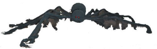 Large Black Creepy Spider Halloween