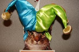 (Jester Hat - Cat Costume)
