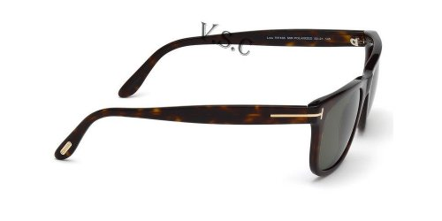 664689602933 - Tom Ford Leo 336 Wayfarer Leo  Havana Polarized carousel main 2
