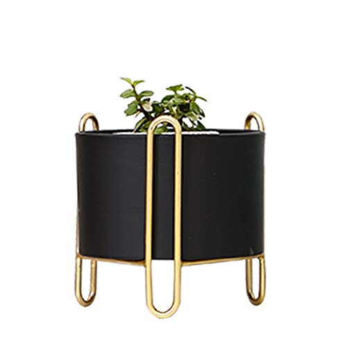 Black Metal Flower Plant Pot for Office Desk Decor, Small Cactus Flower Holder Pot with Gold-Plated Feet, 6.7'' High