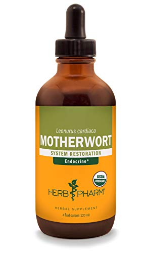 Herb Pharm Certified Organic Motherwort Liquid Extract for Endocrine System Support - 4 Ounce