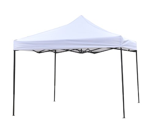 Trademark Innovations Durable and Strong Canopy Tent Set, 10 x 10-Feet, Outdoor Stuffs