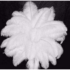 White Ostrich Wing Plume Feathers~10 pcs.- 14 to 17