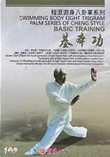 Bagua: Swimming Body Basic Training