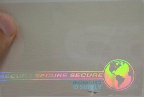 Web & Earth Hologram Overlay - Credit Card Size Teslin/PVC ID Card Hologram Overlays - 10 (Backed Pvc Cards)