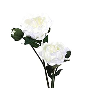 "Floral Kingdom Real Touch Artificial Latex 20"" Beijing Peony Flowers for Floral Arrangements, Bridal Bouquets, Home/Office Decor (2 PK) (White) 97"