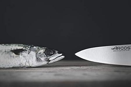 Arcos Serie 2900, Cuchillo Pescadero, Hoja de Acero Inoxidable Nitrum de 290 mm, Mango inyectado en Polipropileno Color Negro