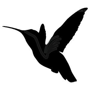 Colibri Volando Pegatinas Vinilo Adhesivo 50cm Altura 50cm