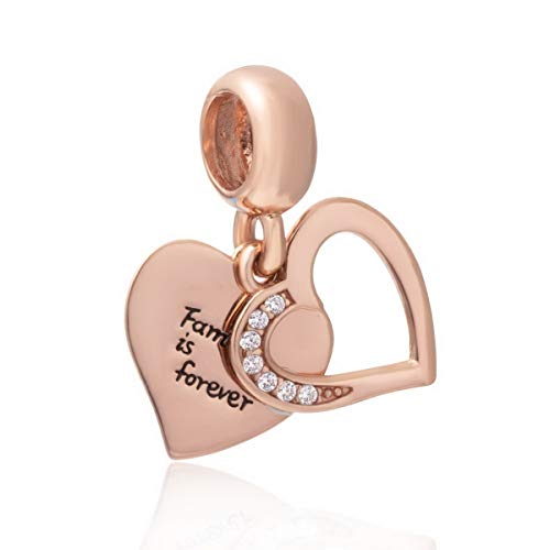 ZIYOU Sterling Silver & Rose Gold Family is Forever Dangle Heart Charm Bracelet Fits Biagi Chamilia Jewelry & Most European - Pugster Charm January