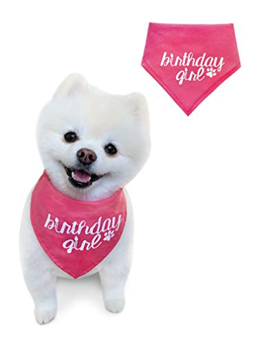 Girl - Pink Pet Scarf- Girl Bandana- Great for Special Occasion or Birthday Gift by Stella & Bear Co. (Small, Pink Girl) ()