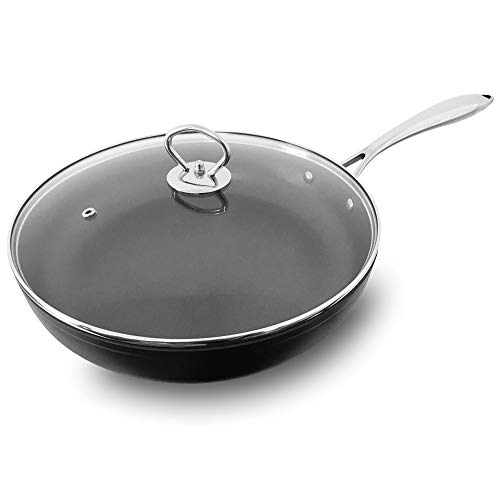 Nonstick Fry Pan with Lid 11 Inch Sauce Pan Omelette Pan Dishwasher Safe Oven Safe Spray Technology Natural Organic APEO & PFOA Free More Efficient Cookware Aluminum Alloy Professional Fry Pan