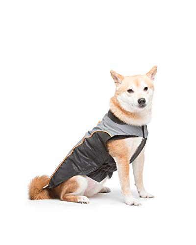 Dog Gone Smart Meteor Nanobreaker Jacket, Black & Grey W/Orange Piping, 12