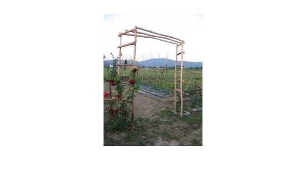 Arco para rosas y plantas trepadoras de Castaño 3 metros x 250 ...