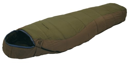 ALPS Mountaineering Desert Pine Mummy Sleeping Bag (0 Degree), Outdoor Stuffs