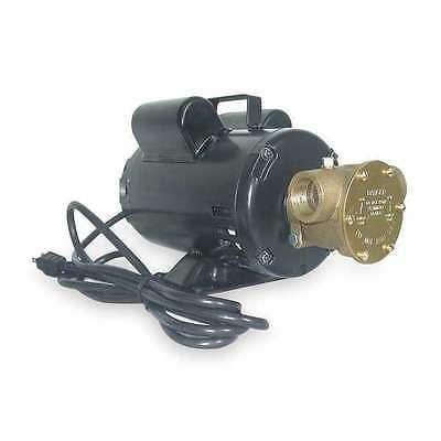 Dayton 3ACC1 Pump, Bronze, 3/4 HP, 115/230V, 10.8/5.4Amps by Dayton