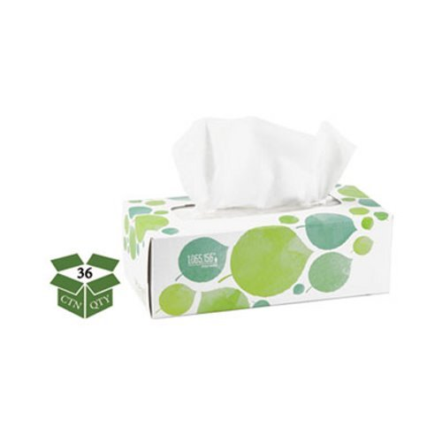 Seventh Generation 13712 100% Recycled Facial Tissue, 2-Ply, 175 per Box, White (Pack of 36) by Seventh Generation