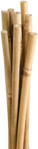 Approx. 7//16 Inch x 6 Feet Pack of 10 Natural First-Cut Bamboo Stakes