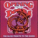Opening Brand new the Doors: Blues Tribute Doors Japan's largest assortment to