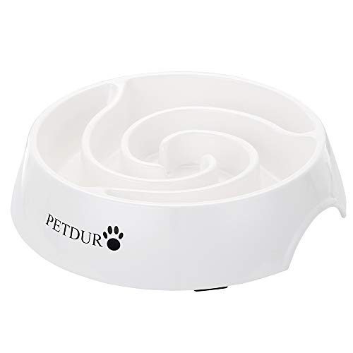 PETDURO Slow Feed Dog Bowl Large 9.75 inch, Cat Bowls Slow Feeder with Food...