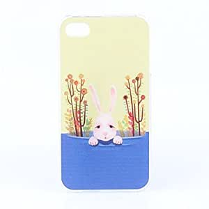 Buy Lovely Rabbit Pattern Hard Case for iPhone 4 and 4S