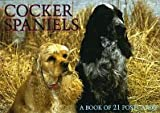 Cocker Spaniels Postcard Book, BrownTrout Staff, 1563139286