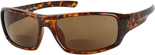 bifocal safety glasses 1 75 - 4