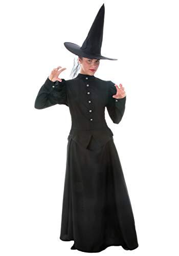 Glinda Wicked Halloween Costumes (Deluxe Womens Plus Size Witch Costume Witch Costume for Women 3X)