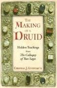 The Making Of A Druid  Hidden Teachings From  I The Colloquy Of Two Sages  I   Hidden Teachings From The Colloquy Of Two Sages