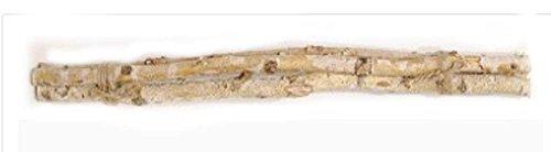 Fantastic Craft Birch Tree Stick Branch Bundle   3 Sticks   24