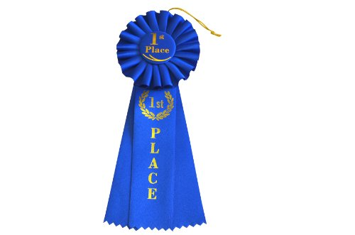 First Place Award - HAYES SPECIALTIES 1st Place Rosette Ribbon