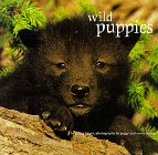 Wild Puppies, Chronicle Books LLC Staff, 0811810399