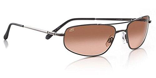 d95cb561223c Amazon.com  Serengeti Velocity Drivers Gradient Sunglasses (Aviator)   Clothing