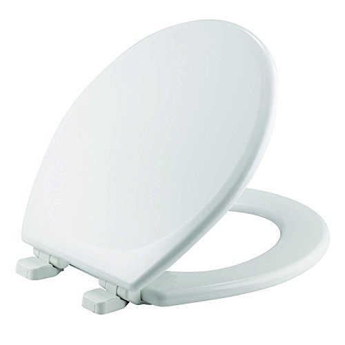(MAYFAIR Toilet Seat will Slow Close and Never Loosen, ROUND, Durable Enameled Wood, White, 43SLOW)