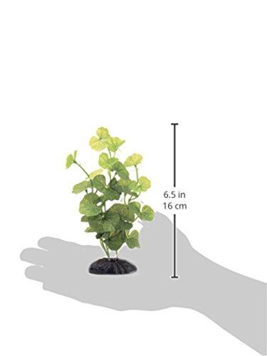 Marina-Ecoscaper-Hydrocotyle-Silk-Plant-Plant-8-Inch