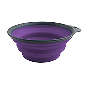 Dexas Popware for Pets Collapsible Travel Cup, Large, Gray/Purple