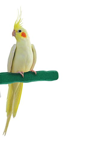Sweet Feet and Beak Comfort Grip Safety Perch for Birds Patented Perch Keeps Nails and Beak in Top Condition - Safe and Non-Toxic, for Cages  Small/Green