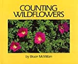 Counting Wildflowers, Bruce McMillan, 0688028594