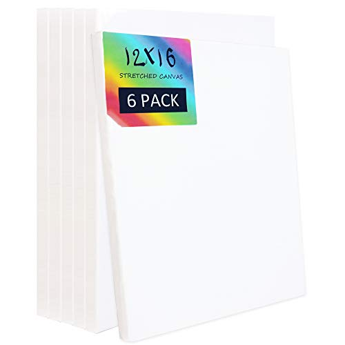 White Stretched Canvas Professional Artist Quality for Painting Set of 6 Pack (12x16inches)