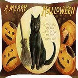 Cushion cover throw pillow case 18 inch Halloween witch pet black cat broom pumpkin lantern funny both sides image zipper