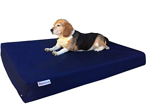 Dogbed4less Durable Large Gel Memory Foam Dog Bed with 1680 Nylon Blue Cover and Waterproof Liner with Bonus Cover, 41X27X4 Inch (Fit 42X28 Crate) ()
