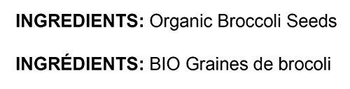 Organic Broccoli Seeds for Sprouting by Food to Live (Non GMO, Kosher, Bulk) — 8 Pounds by Food to Live (Image #3)