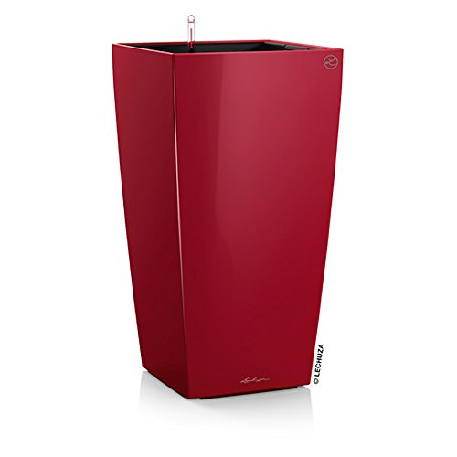 Lechuza Premium Cubico 22cm High Gloss Scarled Red Self Watering 41cm Tall Planter Pot (In Trees Patios Uk Pots For)