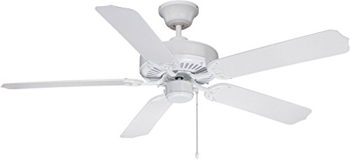 Craftmade WOD52WW5P Ceiling Fan with Blades Included Review