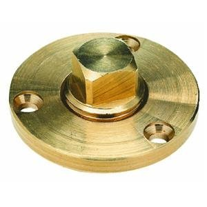 Brass Plug Only 1/2