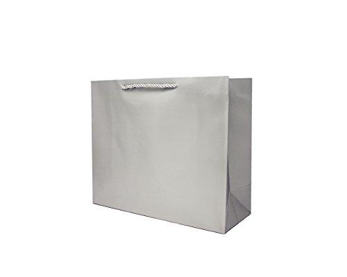 Singular Metallizing Party Gift Paper Bags Large Size (Set of 12) (Horizontal(16
