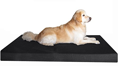 Dogbed4less Jumbo Orthopedic Gel Memory Foam Dog Bed, Waterproof Liner with Durable Washable Black Canvas Cover, 55X47X4 Inch